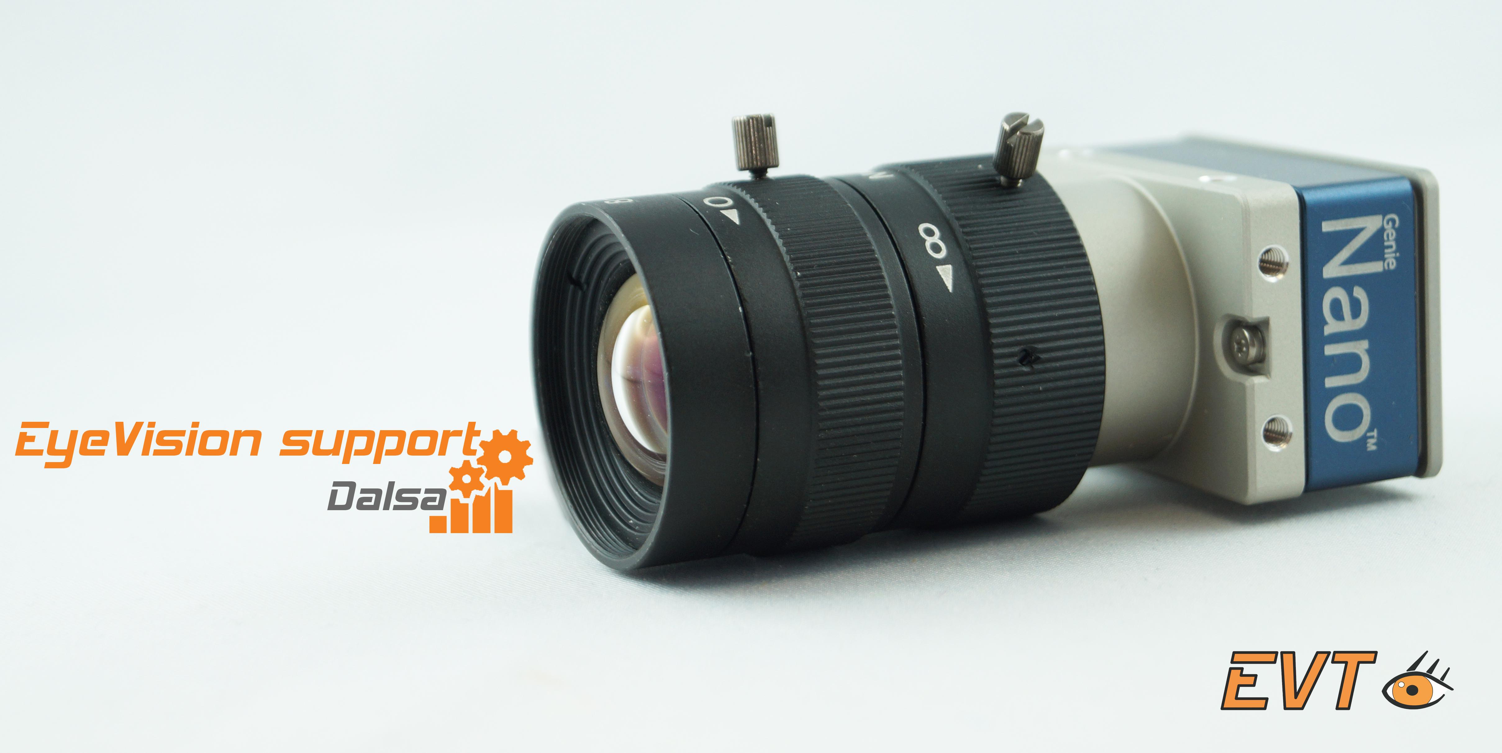 EyeVision unterstützt DALSA Kameras – gleichzeitig mit Multi-Instanz