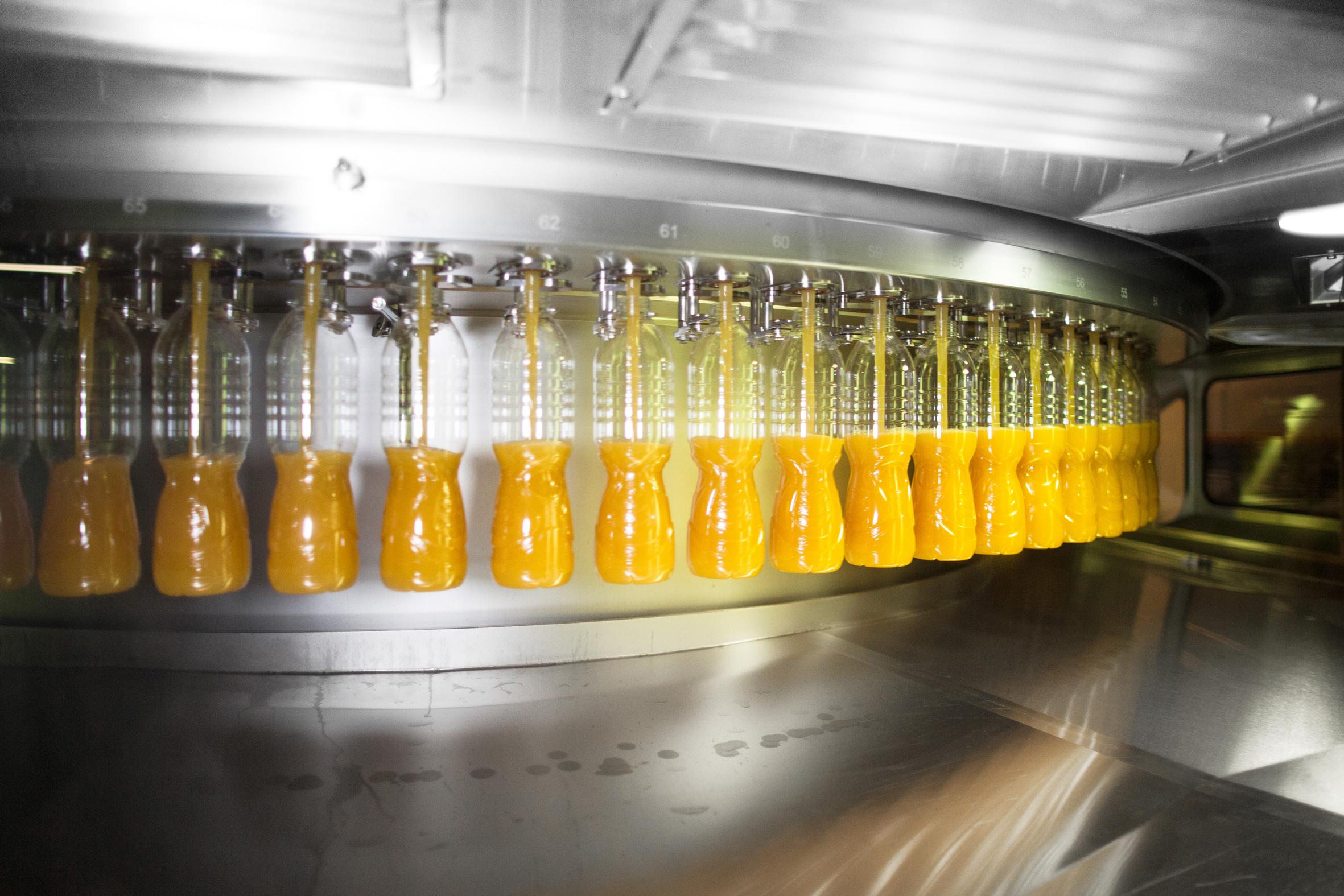 Ein polnischer Familienbetrieb profitiert vom Wachstum auf dem Getränkemarkt